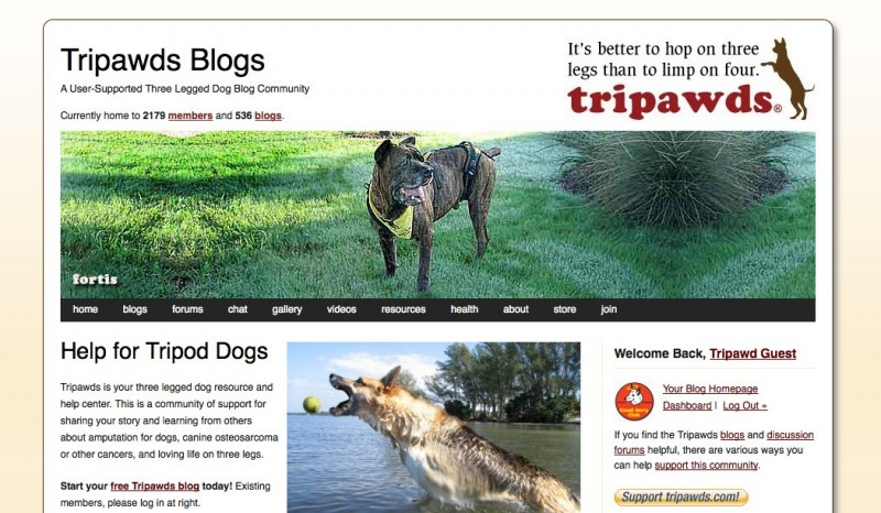 Tripawds Three Legged Dog Blogs WordPress Multisite Network