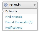 Friends Plugin Widget Admin Screenshot