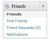 Friends Plugin Widget Admin Screenshot
