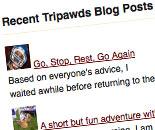recent global wordpress network posts widget